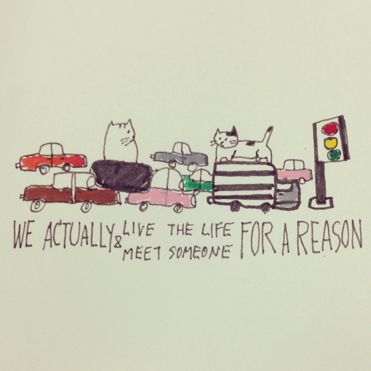 Live for a reason Catclub card