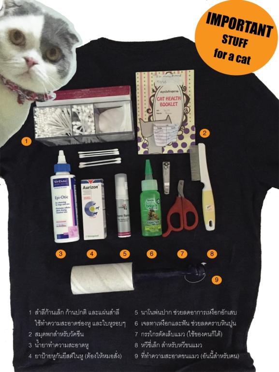Cat's-bag