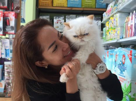Catclubguest10_princess