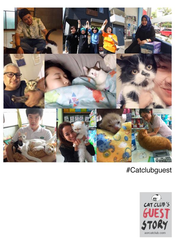 แขกรับเชิญใน Cat club guest
