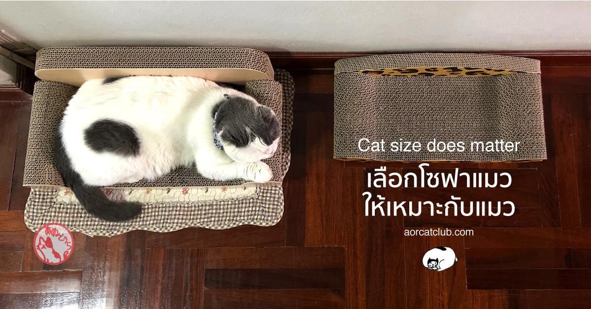 ที่ลับเล็บแมวแบบโซฟา