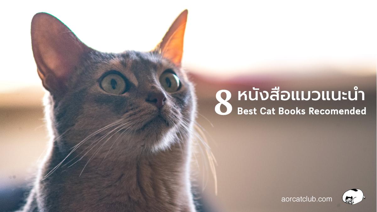 8 หนังสือแมวแนะนำ