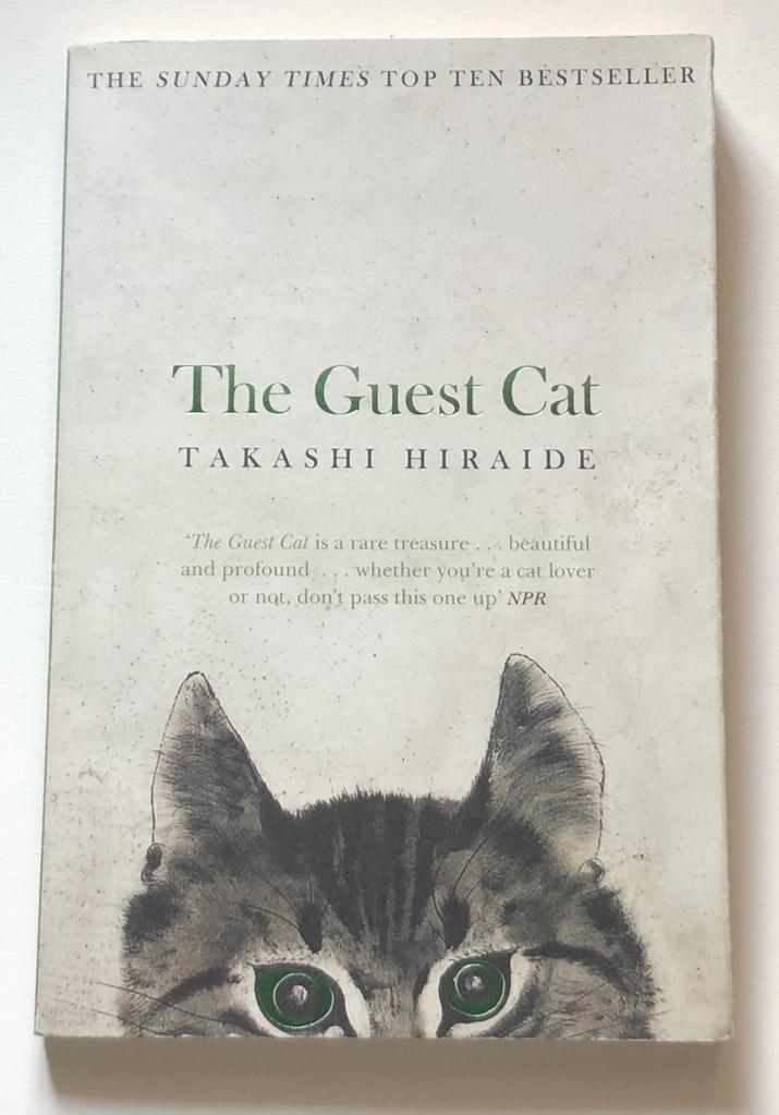 หนังสือแมวสนุกๆ