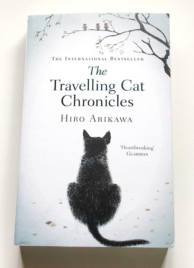 แมวชอบเดินทาง