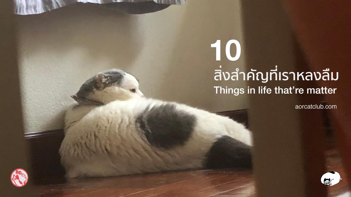 10 สิ่งสำคัญที่เราหลงลืม